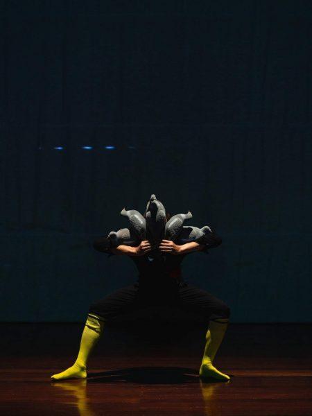 Pichet dance human rights