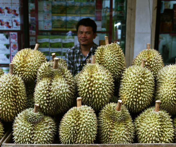 COVID-19 export fruit